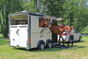 Minimax trailer